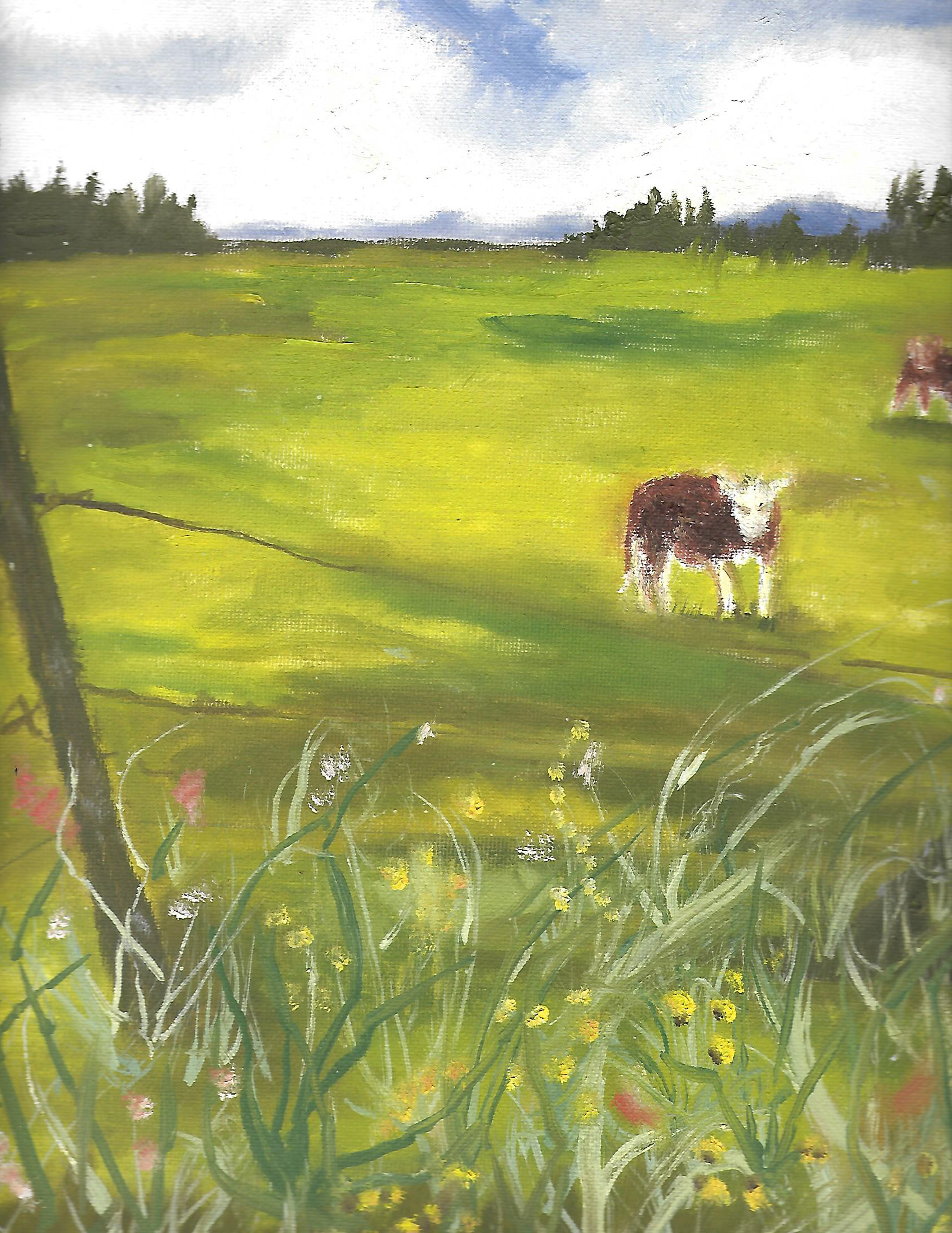 Cow in field - oil